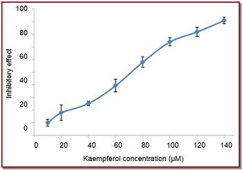 View of Kaempferol modulates the metastasis of human non
